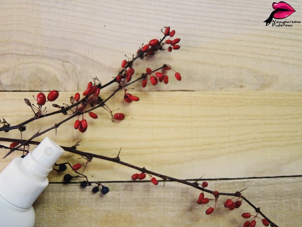 Apteczka Agafii, Aktywne serum ziołowe na porost włosów.
